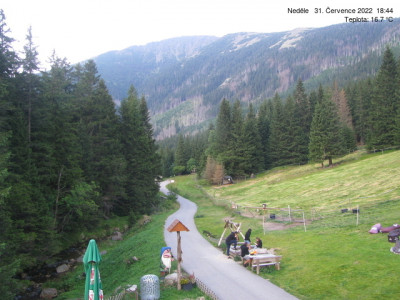 Webcam  Downhill Pec pod Snezkou